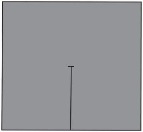 3474.jpg